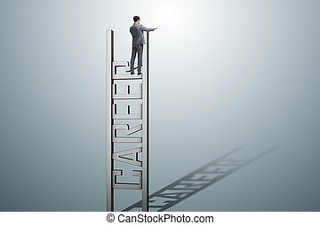 carrière, zakenman, ladder, concept