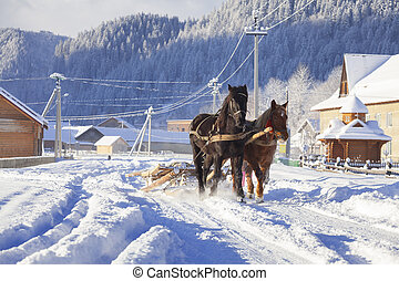 carriage with horses in the winter in village
