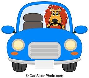 carro azul, leão