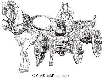 carro cavalo