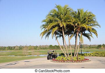 carro del golf, árboles de palma, y, florida, hotel, recurso
