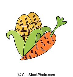 carrot and corn fresh on white background