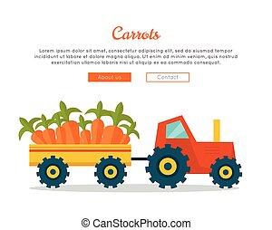 Carrot Farm Web Vector Banner in Flat Design.