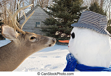 Carrot Nose - Big buck going for the snowman\'s nose.