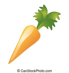 Carrot on a white background
