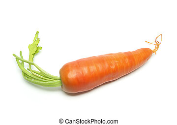 Carrot on Isolated White Background