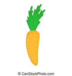 Carrot vector isolated on white background.