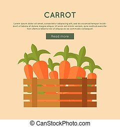Carrot Vector Web Banner in Flat Style Design.