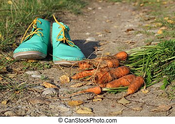 carrots and shoes on the road