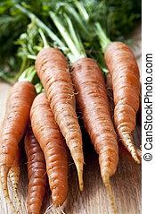 Carrots - Bunch of whole fresh organic orange carrots