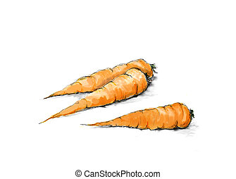 Carrots - Digital watercolour of three carrots on white