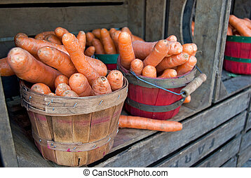 Carrots in bushel basket at the farmer's market.