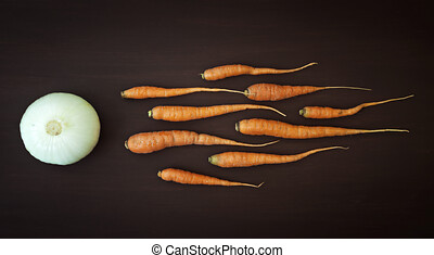 Carrots in sperm concept
