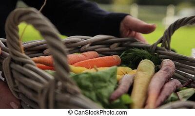 Carrots inside a basket
