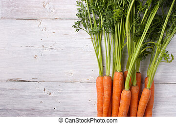Carrots on the white background