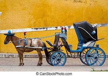carruagem, izamal, cavalo