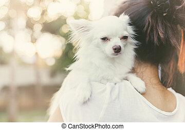 carry dog