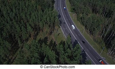 Cars are moving on the road surrounded by green trees in the summer.