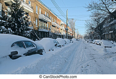 Cars covered by snow on the street
