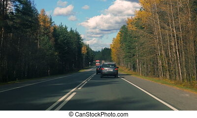 Cars driving on an asphalt road in the autumn forest