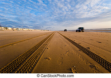 cars driving on the beach