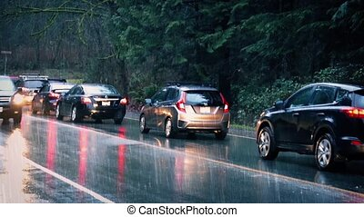 Cars Driving Through Park In Rain
