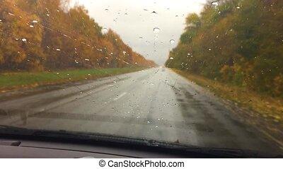 cars go on travel the road asphalt. autumn beautiful view...