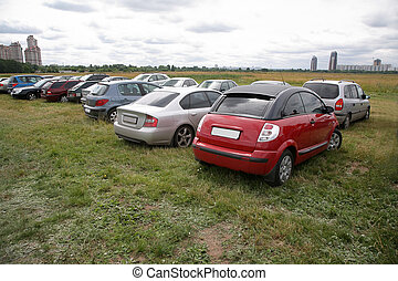 cars on the meadow