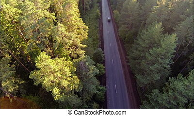 cars on the road in the forest, aerial view