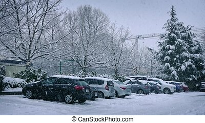 Cars Parked In Heavy Snowfall