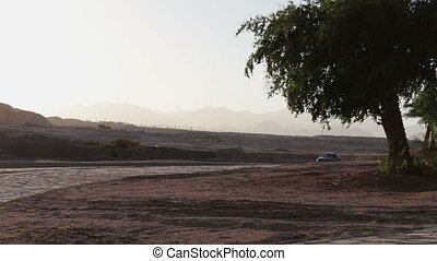 Cars pass by the picturesque road - Road in the Egyptian...