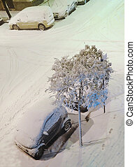 cars under snow in the city