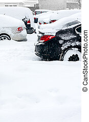 cars under snow in winter