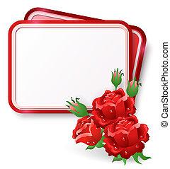 cartão, com, rosas vermelhas, e, gota orvalho