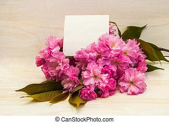 cartão postal, com, sakura, flowers.