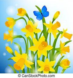 cartão postal, flores mola, narcissus
