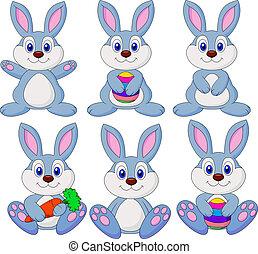 cartón, conjunto, conejo