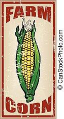 cartões, fazenda, milho