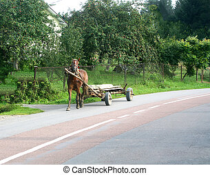 Cart drawn by a horse. Suburban Scenic Area.