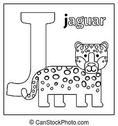carta, colorido, j, página, jaguar