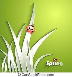 carta, erba, con, coccinella
