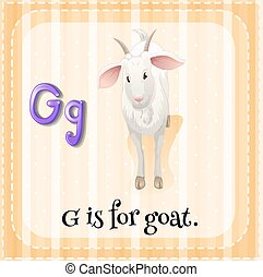 carta g