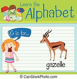 carta, gacela, g, flashcard