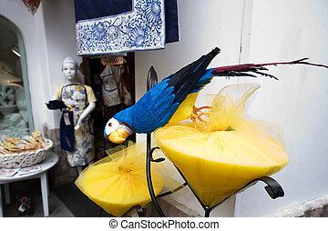 carta, pappagallo, di