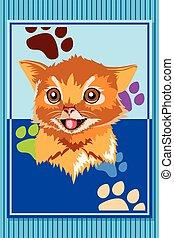 cartaz, animal, gato