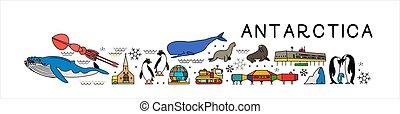 cartaz, antártica, mundo, map., sightseeing, attractions., ícones, linha, animais, viagem