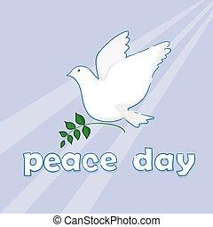 cartaz, símbolo, paz, dia, mundo, pombo branco, pássaro