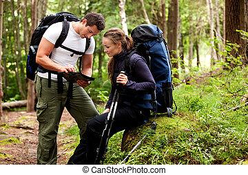 carte, camping