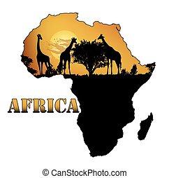 carte, faune, afrique
