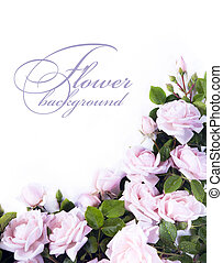 carte, fleur,  art, salutation, fond